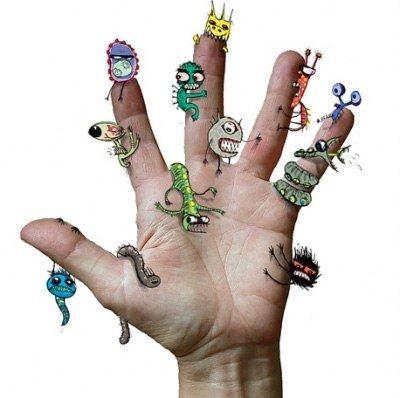 Бактерии в организме человека, полезные и вредные: их роль ...
