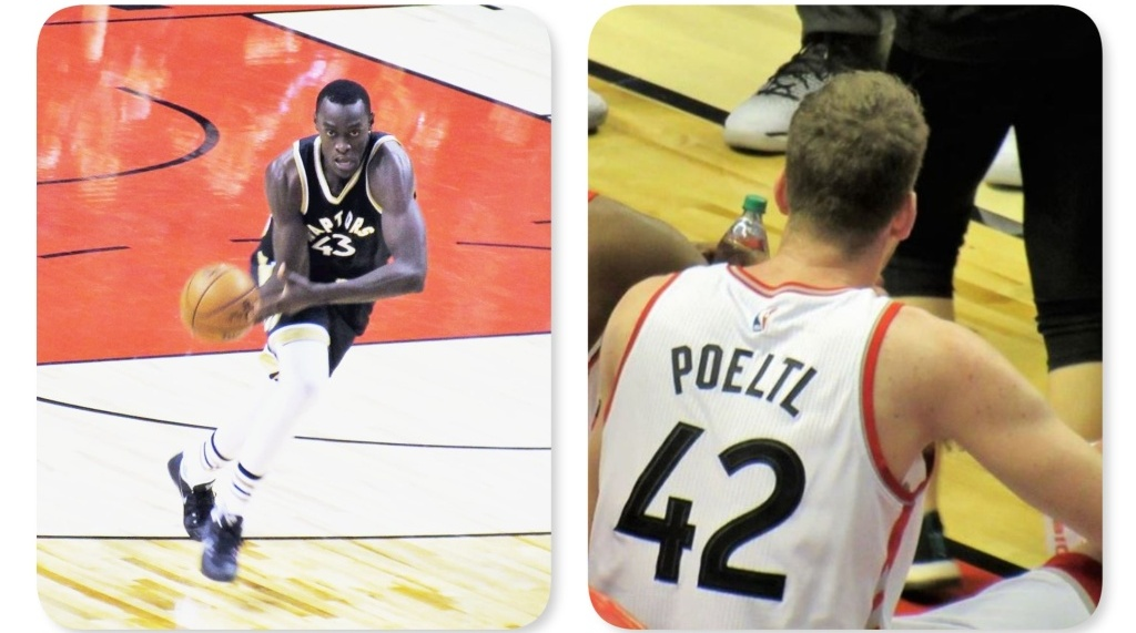 Raptors-pascal-siakam-and-jakob-poeltl-by-larry-millson-collage