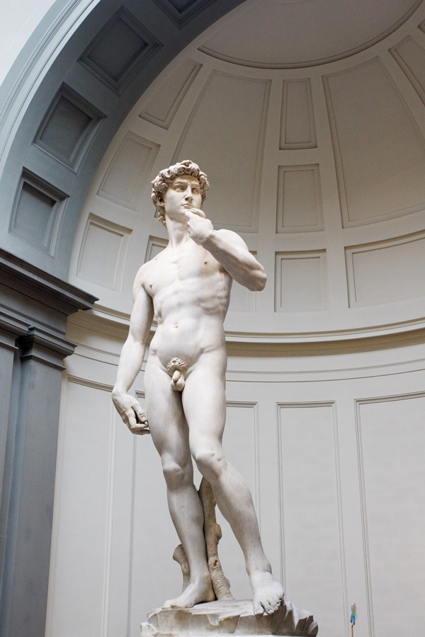 The statue of David at the Accademia museum in Florence is one of Michelangelo's finest pieces of art.