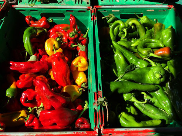 Do you look for an unique local experience in Nice? Try the food tour around Nice: You learn about the city AND get a taste of Nice on the Nice food tour. Vibrant colours at the market in Nice