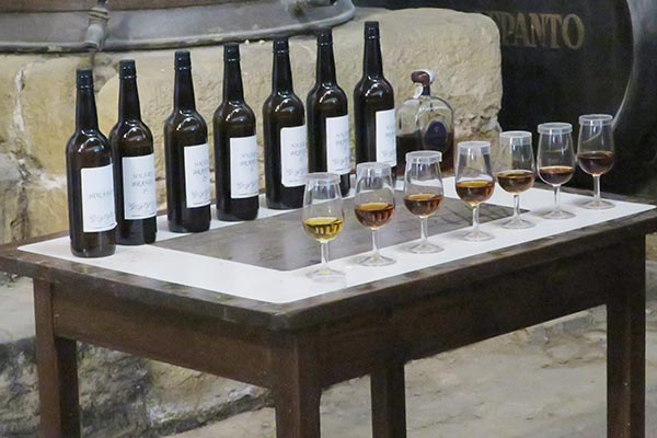 Glasses of different sherry wine displayed for the sherry tasting tour in Jerez de la Frontera.