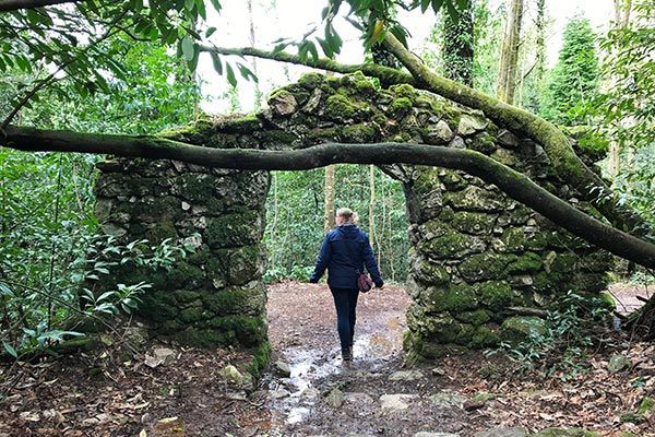 Bussaco Forest Portugal - walking in the forest