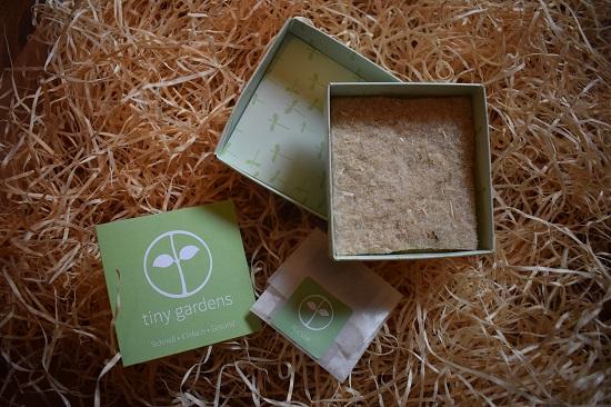 Brandnooz Genussbox Oktober 2017 Tiny Garden Rucola ausgepackt Probenqueen