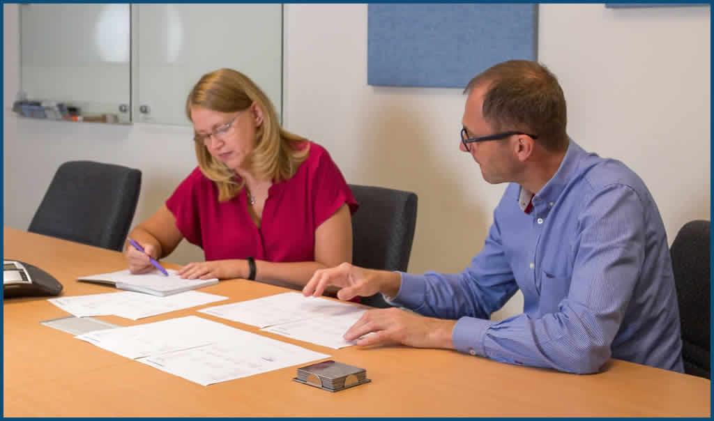 Dynamics 365 NAV consultants analysing data