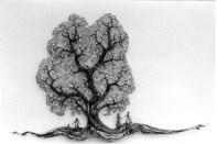 3000 Blätter an einem Baum
