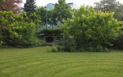 Guscha Garten (17)