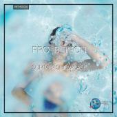 PRO-B-TECH-SUMMER-SHOWCASE-cover