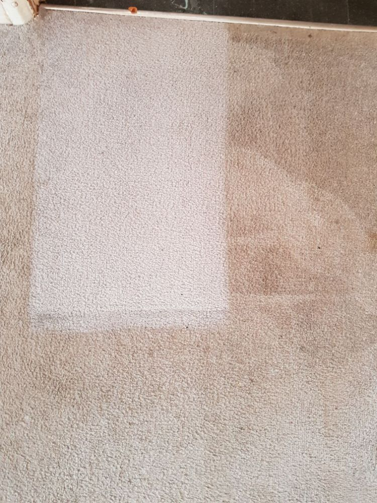 Cleaning carpet by vacuum cleaner