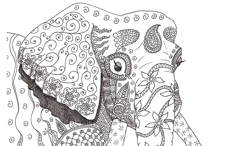 Free Difficult Coloring Pages For Adults   colouring pages animals hard
