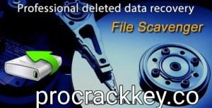 File Scavenger 6.1 Crack + Serial Key Free Download 2021