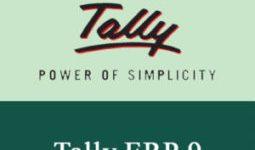 Tally ERP 9 Release 6.1.1 Crack