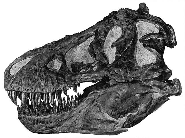 mordidas de dinosaurios
