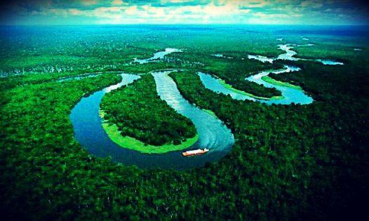 maravillas del Amazonas