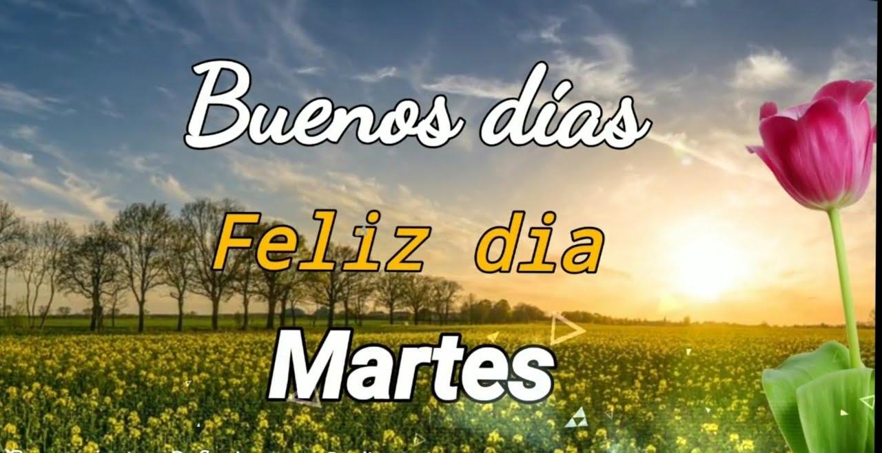 Feliz Martes 122 1
