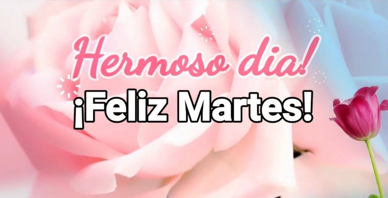 Feliz Martes 132 1
