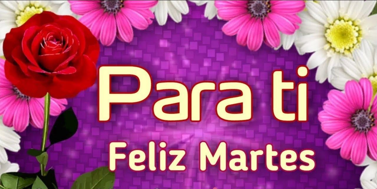 Feliz Martes 140 1