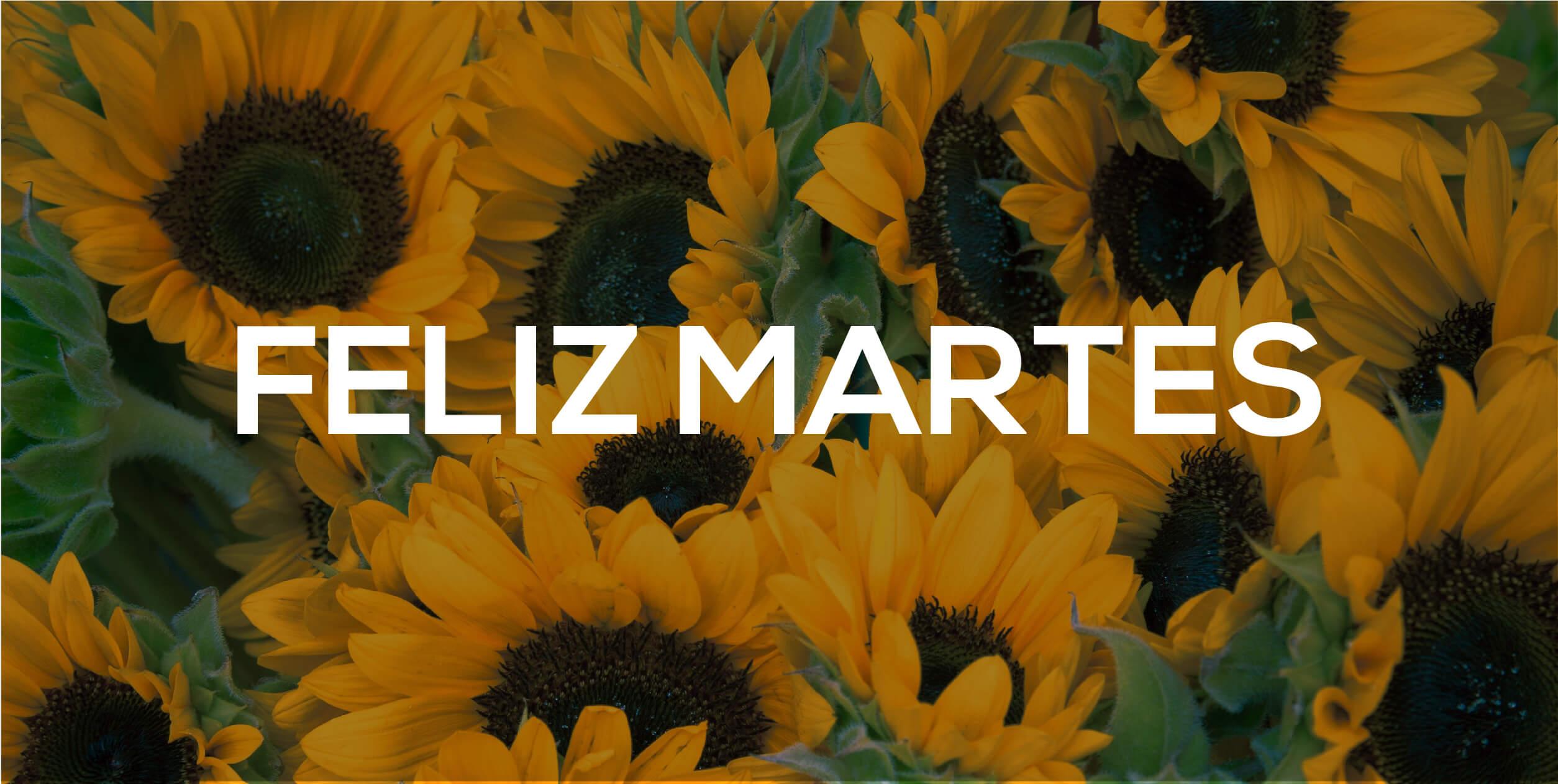 IMÁGENES DE FELIZ MARTES