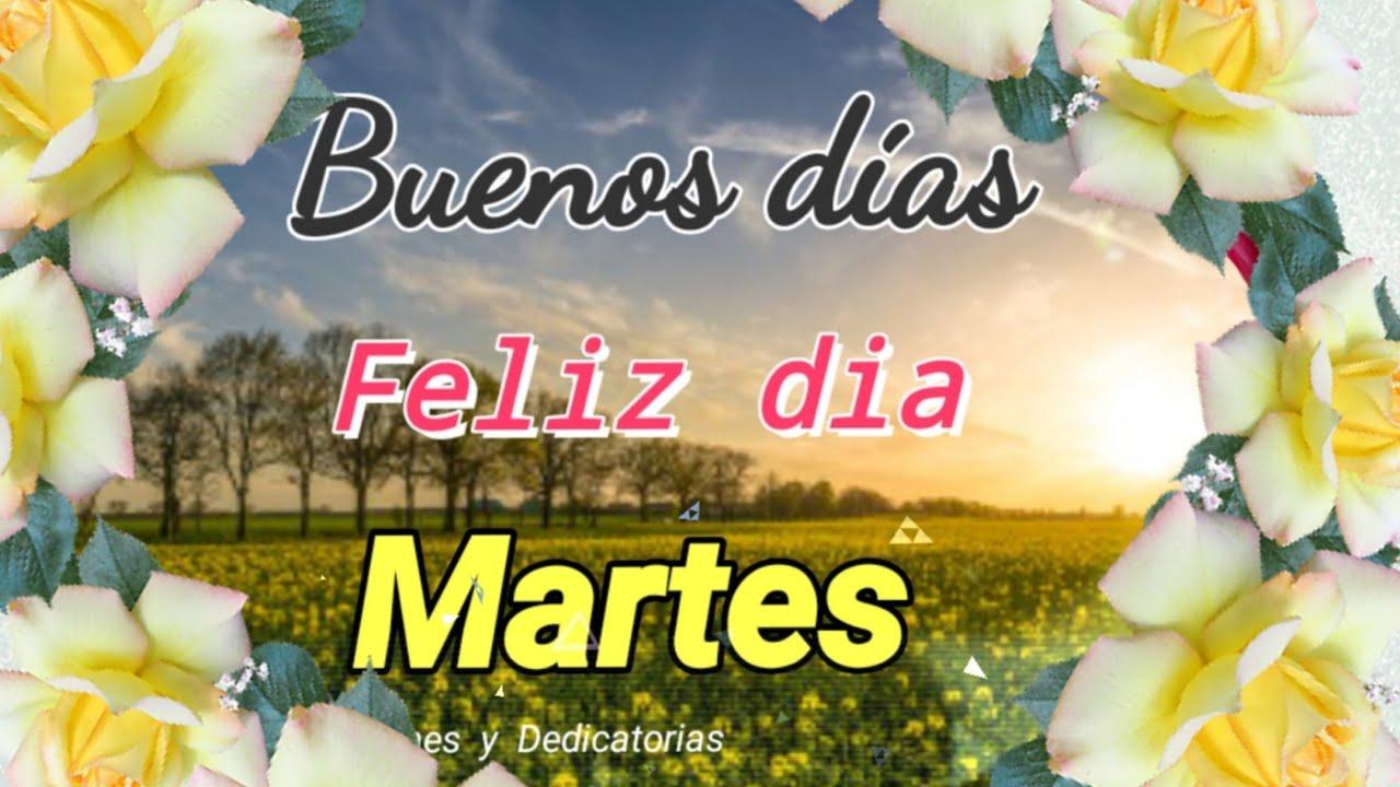 Feliz Martes 73 1