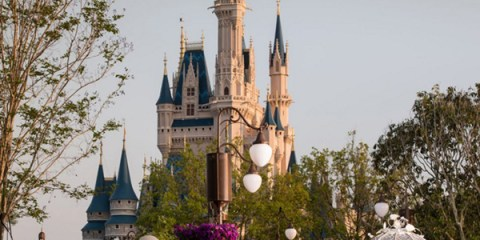 Casamento na Disney - Magic Kindom