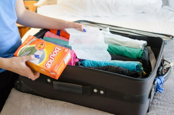 Image result for dryer sheet suitcase