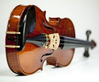 Learn How to Play Violin in 30 Days [Free Online Group ...