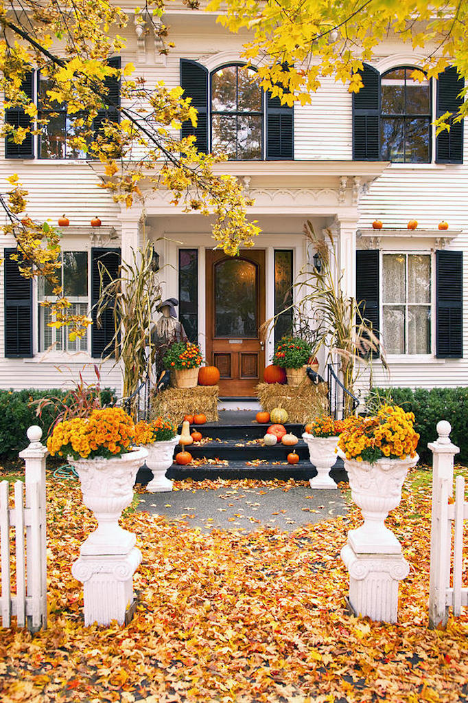 fall-colors-and-inspiration-3
