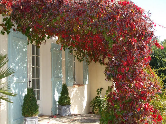 fall-in-provence