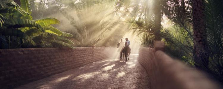 This hidden oasis is a must see Middle East secret