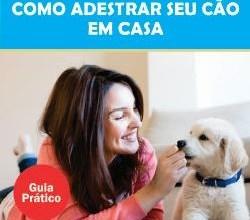 Como Adestrar seu Cão em Casa