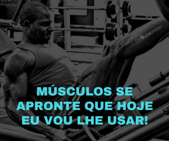 Músculos se apronte que hoje eu vou lhe usar! - frases de motivação