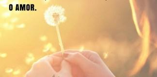 Não há nada que não se consiga com a força de vontade, a bondade e, principalmente, com o amor. - Marcus Cícero