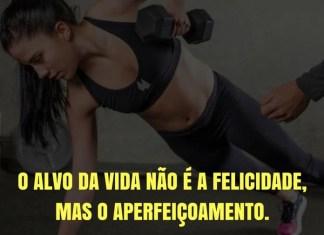 Frases de motivação - O alvo da vida não é a felicidade, mas o aperfeiçoamento.