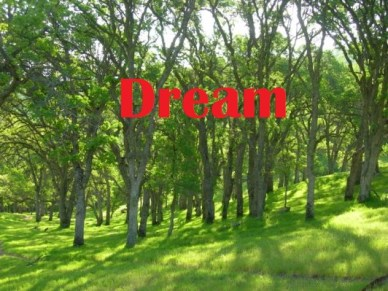 rolling-hill-dream-image-2