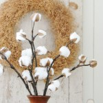 Cotton Branches Diy Farmhouse Decor Prodigal Pieces