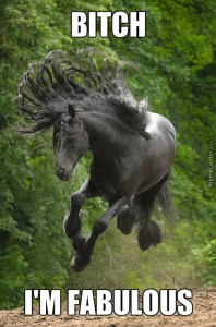 fabulous-horse-is-fabulous_c_4147581