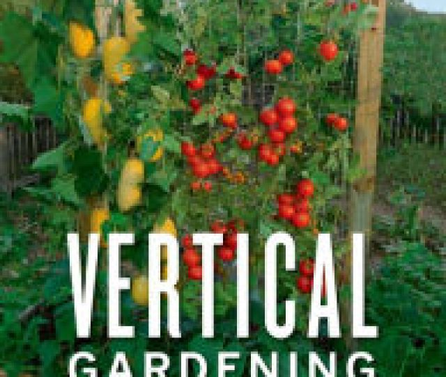 Vertical Gardening Grow Up Not Out For More Vegetables And Flowers In Much
