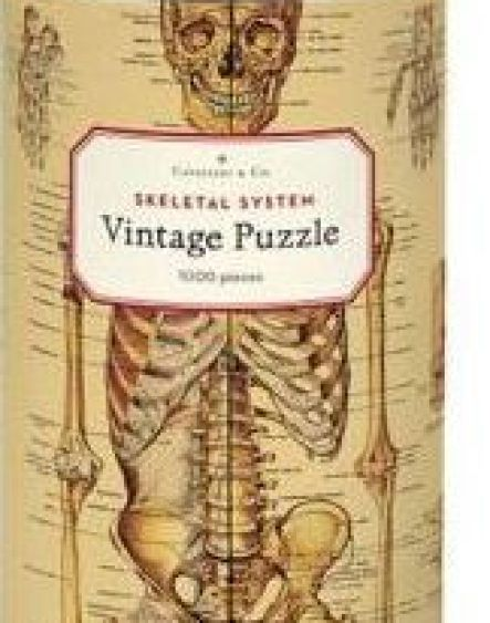 Cavallini & Co - Skeleton 1,000 Piece Jigsaw Puzzle by Cavallini & Co. |  Barnes & Noble®