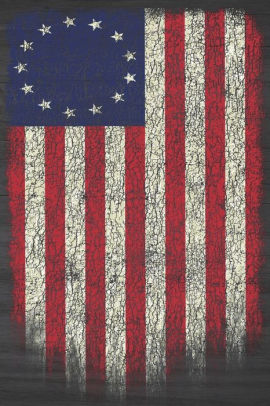 Betsy Ross American Flag Notebook 1776 Patriotic Usa Flag Blank Lined Composition Book Diary Journal For Patriots Students Work School 6 X 9 130 Pages By American Retro Publications Paperback Barnes Noble