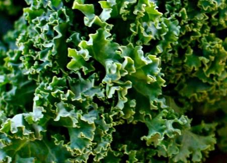 kale texture