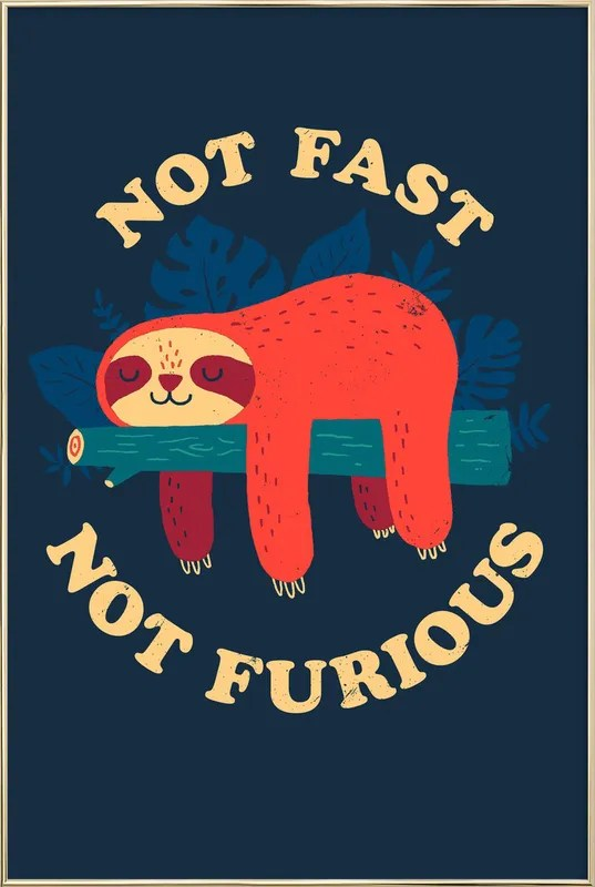 not fast not furious poster