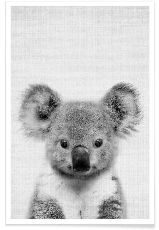 Koala Photo En Noir Et Blanc Affiche Juniqe