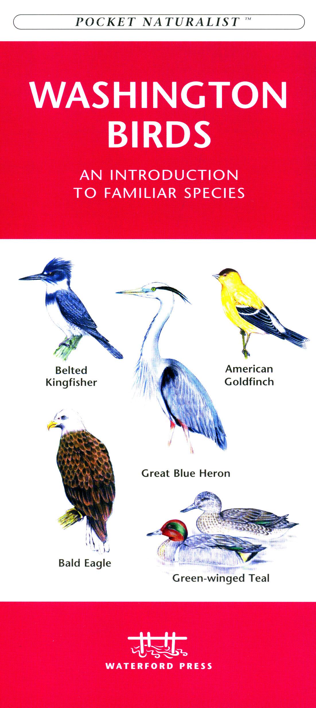 Waterford Washington State Birds