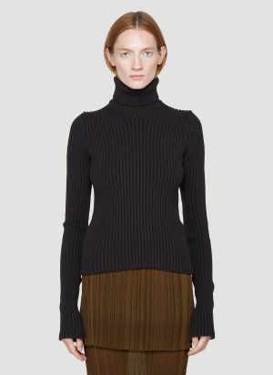 Bottega Veneta Turtleneck Sweater in Brown