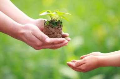 Why You MUST be an Eco-Friendly Productive Muslim and How to Go About It - Productive Muslim