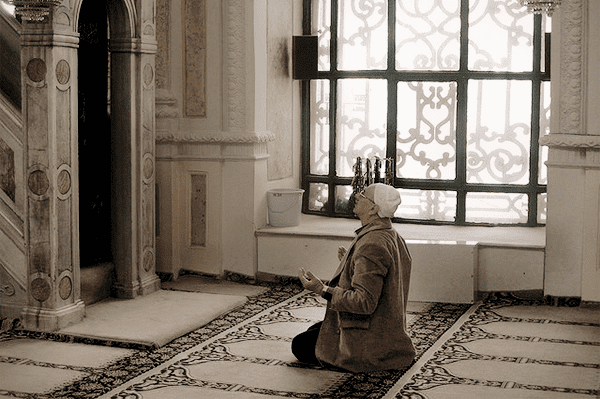 The Attitude of Gratitude - a Productive Muslim's Approach to Life | Productive Muslim