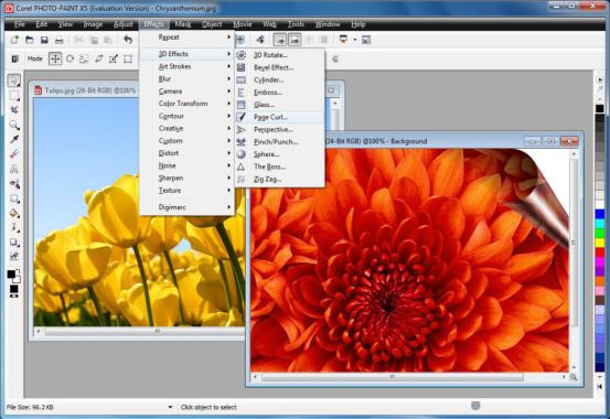 Corel Draw Graphic Suite 12 Serial Number + Crack Full Download