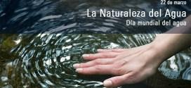 ¿Cómo proteger el Agua de los productos químicos?