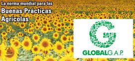 GLOBAL GAP, certificado mundial de buenas prácticas agrícolas