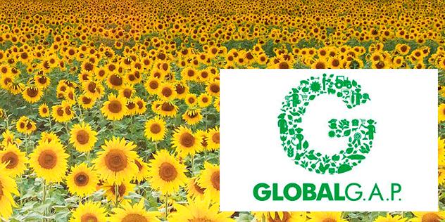 Productos agrícolas certificados GLOBAL GAP