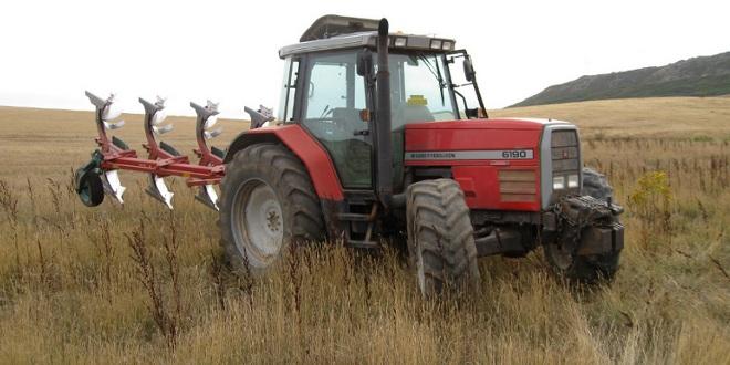 Avance tecnológico agrícola que podría decir adiós al calentamiento global